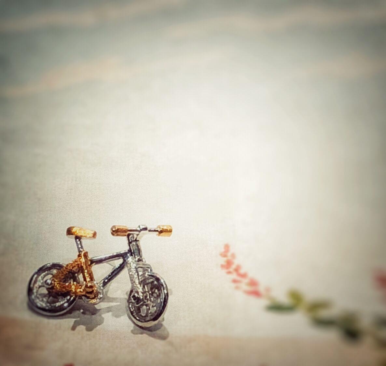 秋の風を感じます  『 自転車のミニブローチ 』